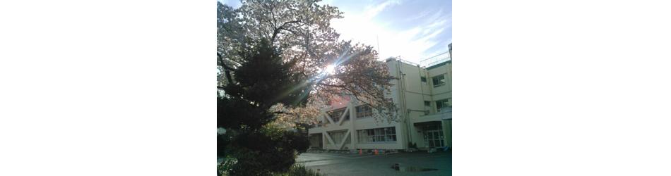 桜と村上東小学校