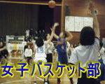 女子バスケット部