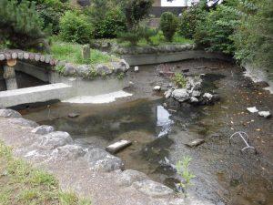 水を抜くと,泥や落ちていたモノが出てきました。