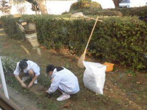「今日は部活がないので」という1年生が,庭のお掃除をしてくれています。