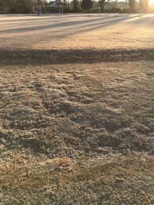 芝生が凍って,朝日に照らされてキラキラしていました。
